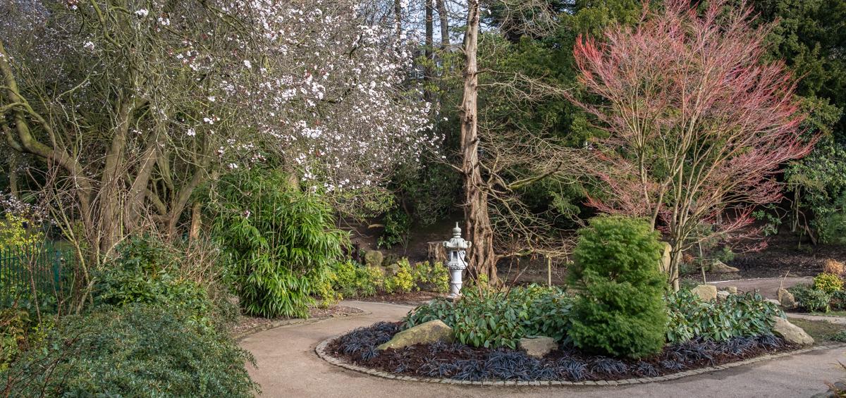 Spring Harrogate Valley Gardens 167 Japanese garden